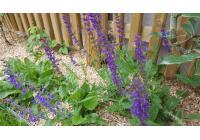 Terrasse et jardin à Pierry