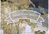 Bone année 2021