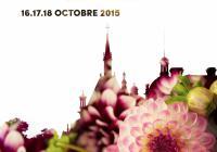 Journée des plantes: de Courson à Chantilly