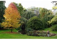 Jardins à visiter dans la Marne