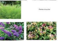 Proposition d'ambiances pour le jardin cocooning